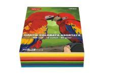 Hartie colorata asortata 10 culori intens, 80g/mp, 500coli/top, Daco