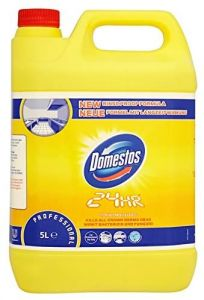 Dezinfectant 24H Citrus Fresh 5L, Professional Domestos