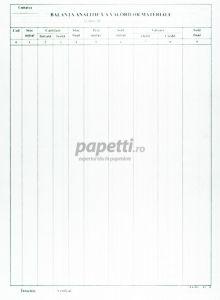 Balanta analitica a valorilor materiale A4