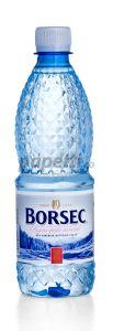 Apa minerala plata, 0,5l, 12buc/bax, Borsec