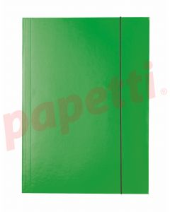 Mapa din carton plastifiat cu elastic A4, verde, Economy Esselte