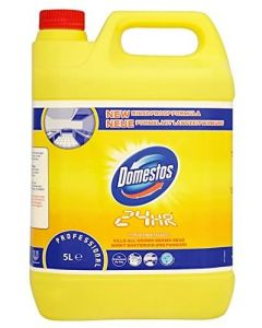 Dezinfectant 24H Citrus Fresh 5L, Professional Domestos